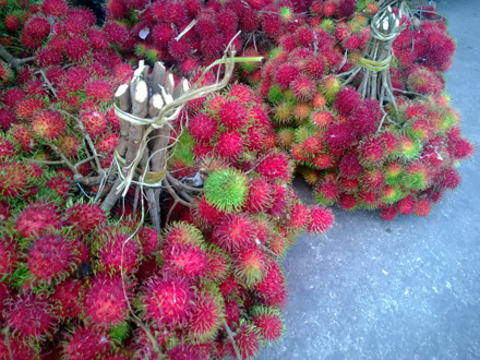 Food Travel Zanzibar Rambutan in the market