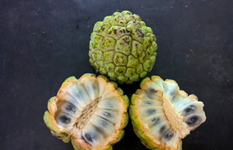 Food Travel Taste Zanzibar Custard Apple